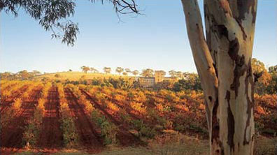 » Barossa Valley - Explorers Way auf eigene Faust Australien «