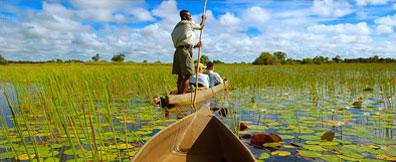 »Eine spannende Reise ins Okavango Delta«