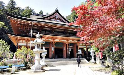 »Kirschbl�te oder leuchtendes Herbstlaub - Japanreise«